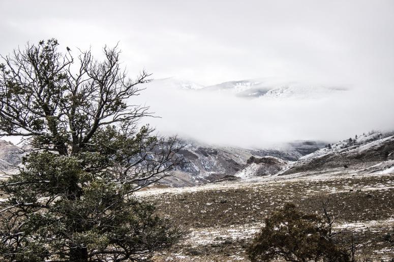 The peeking mountains