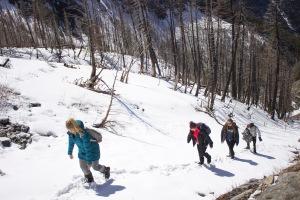 Beartooths - Hikers up a hill