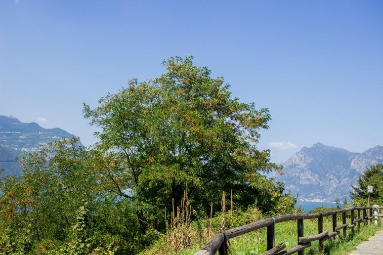 Lake Iseo - bike ride island views