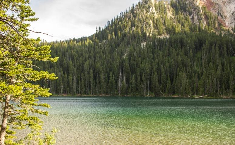 Fairy Lake - Green waters