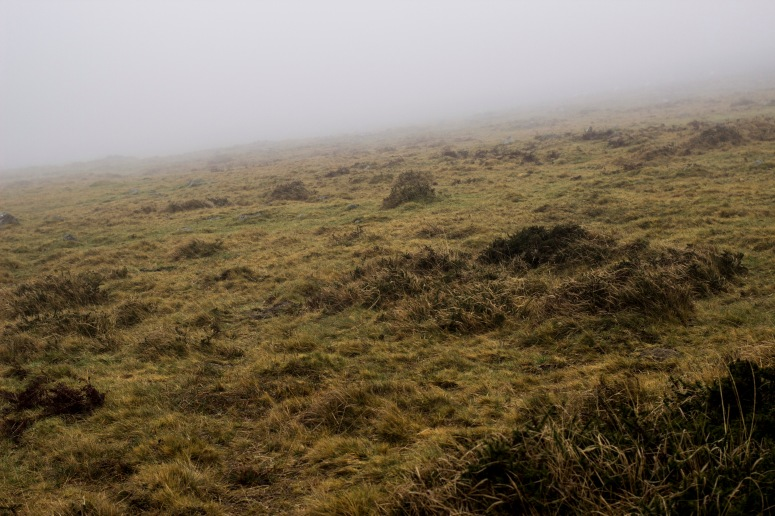 Dartmoor - layer of fog