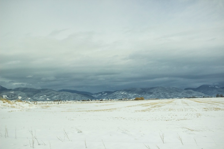 Montana - snowy fields